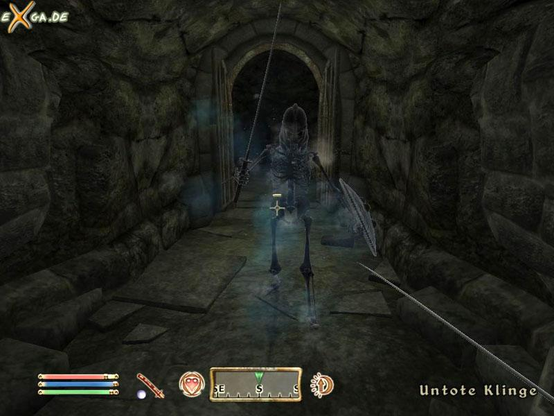 The Elder Scrolls 4: Oblivion - bild24